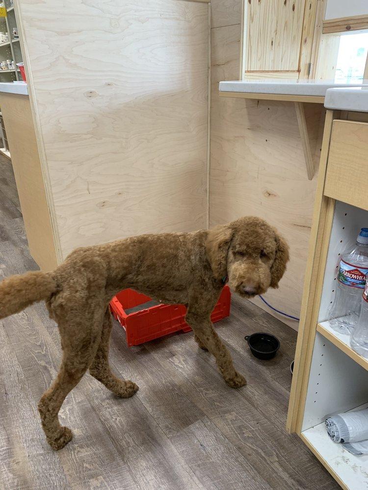 Becca's Pet Salon: 327 E 1200th S, Orem, UT