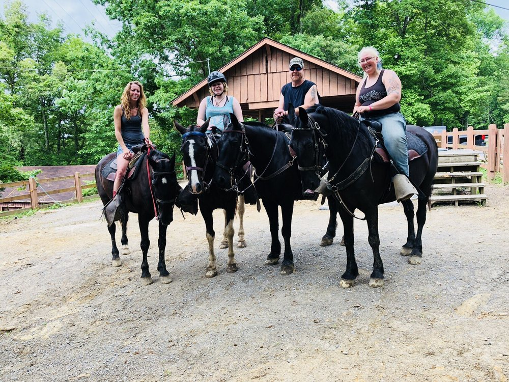 Cumberland Falls Horse Riding Stables: 7351 KY-90, Williamsburg, KY