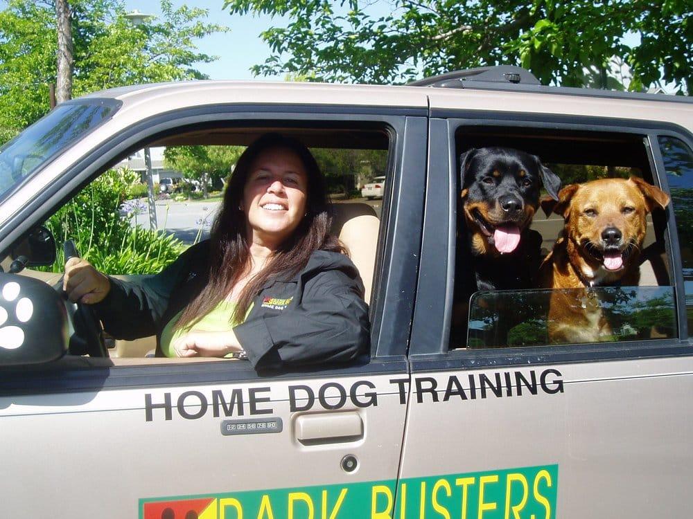 Dog Training Marin County Ca