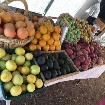 Photo Of Garden Of Eden Organics   Escondido, CA, United States. The  Apricots