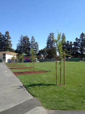 po of fairmeadow elementary school palo alto ca united states new field