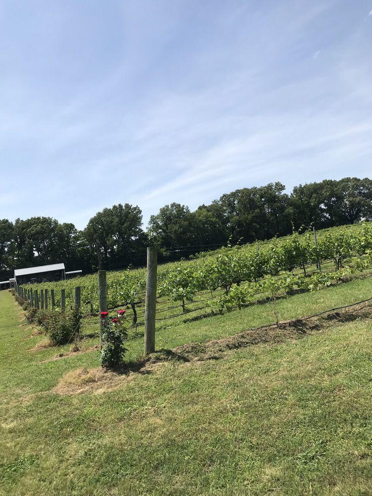 White Squirrel Winery: 4385 US-45W, Kenton, TN