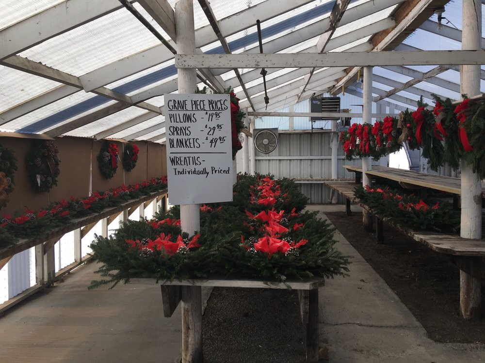 A.B. Hatchery & Garden Center: 916 E Grove St, Bloomington, IL