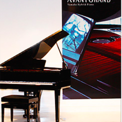 Toronto piano group music education centre musical for Yamaha phone number