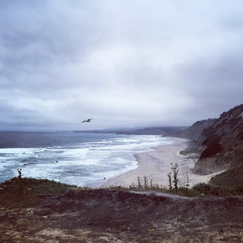 Photo Of San Gregorio State Beach Ca United States The