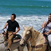 Monterey Bay Equestrian Center 226 Photos Amp 168 Reviews