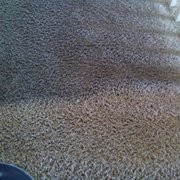 Mike S Carpet Cleaning 15 Reviews Carpet Cleaning