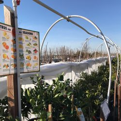 Photo Of Green Acres Nursery Supply Folsom Ca United States