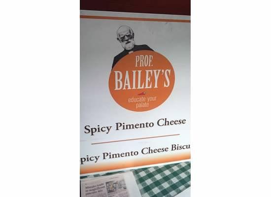 Professor Bailey's