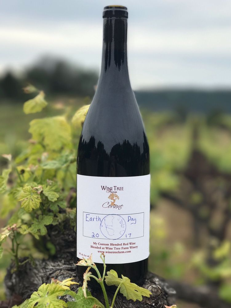 Wine Tree Farm Winery: 14467 HIghway 49, Amador City, CA