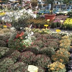 Der holl nder pflanzencenter 14 photos gardening for Pflanzencenter berlin