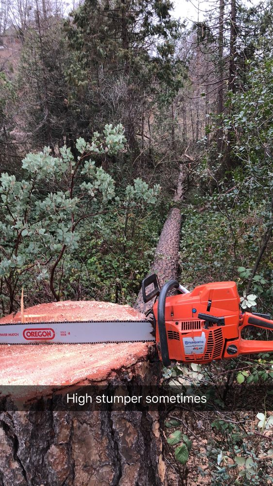 FISK'S TREE & EXCAVATING SERVICE: 42365 Highway 49, Ahwahnee, CA