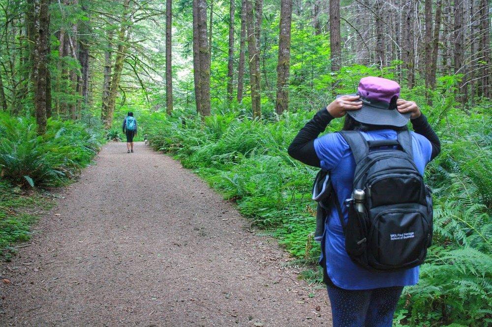 Alsea Falls Recreation Site: Alsea, OR