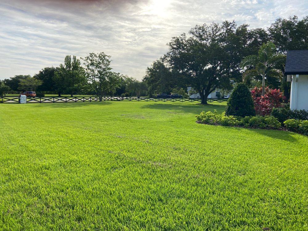 True Vine Landscape Management: 19050 Sugarloaf Mountain Rd, Clermont, FL