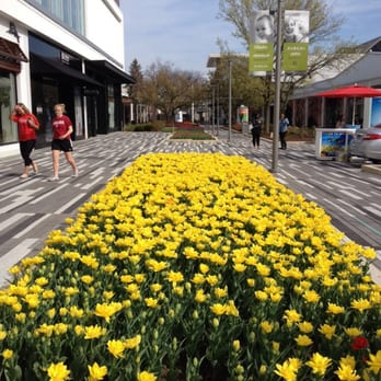 oak brook casual dining. photo of oakbrook center - oak brook, il, united states. in spring. brook casual dining