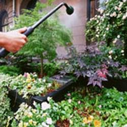 C & C Landscaping & Lawn Services