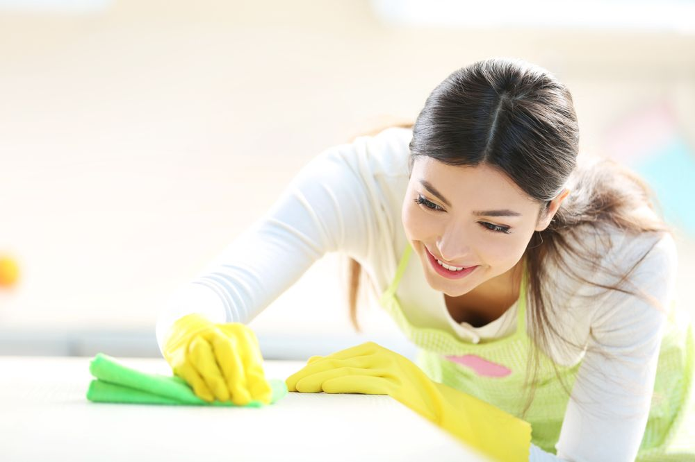 NLZ Cleaning Services of Long Island: 35-11 204th St, Bayside, NY