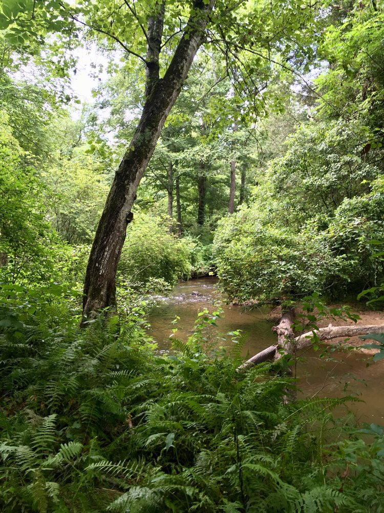 Bent Creek Experimental Forest: 1577 Brevard Rd, Asheville, NC