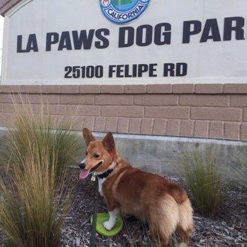 La Paws Dog Park Mission Viejo Ca