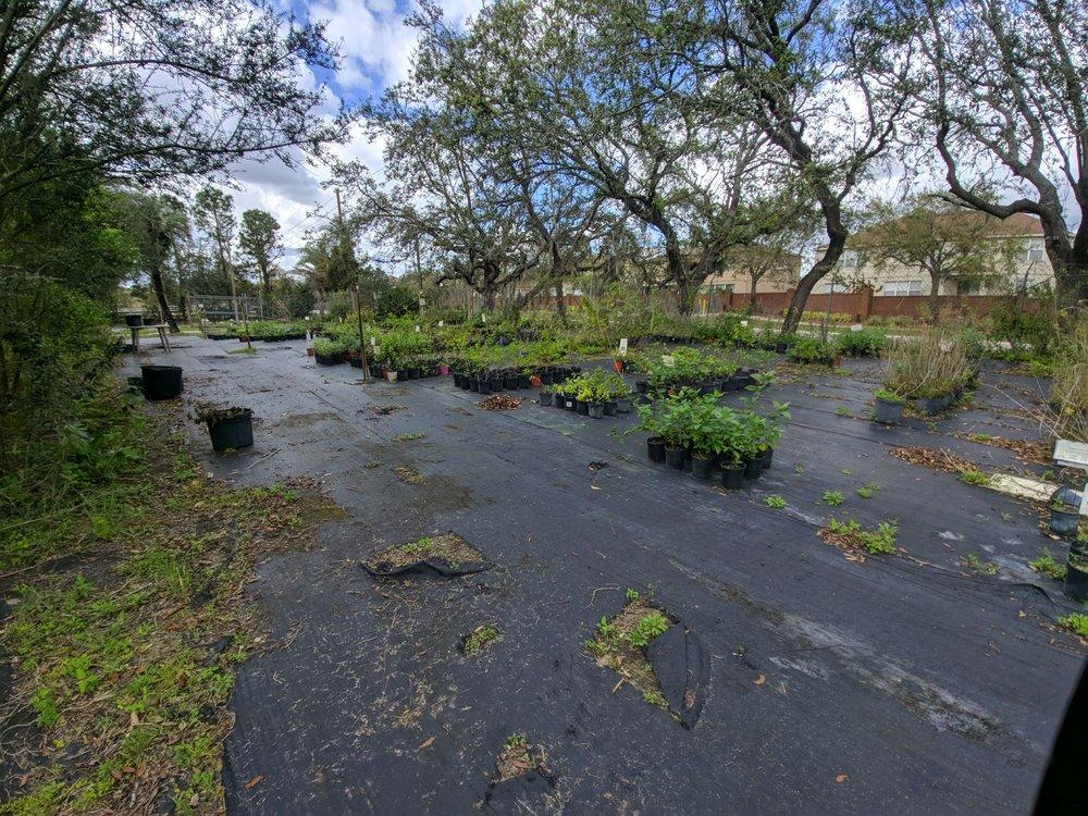 Biosphere Nursery: 14908 Tilden Rd, Winter Garden, FL