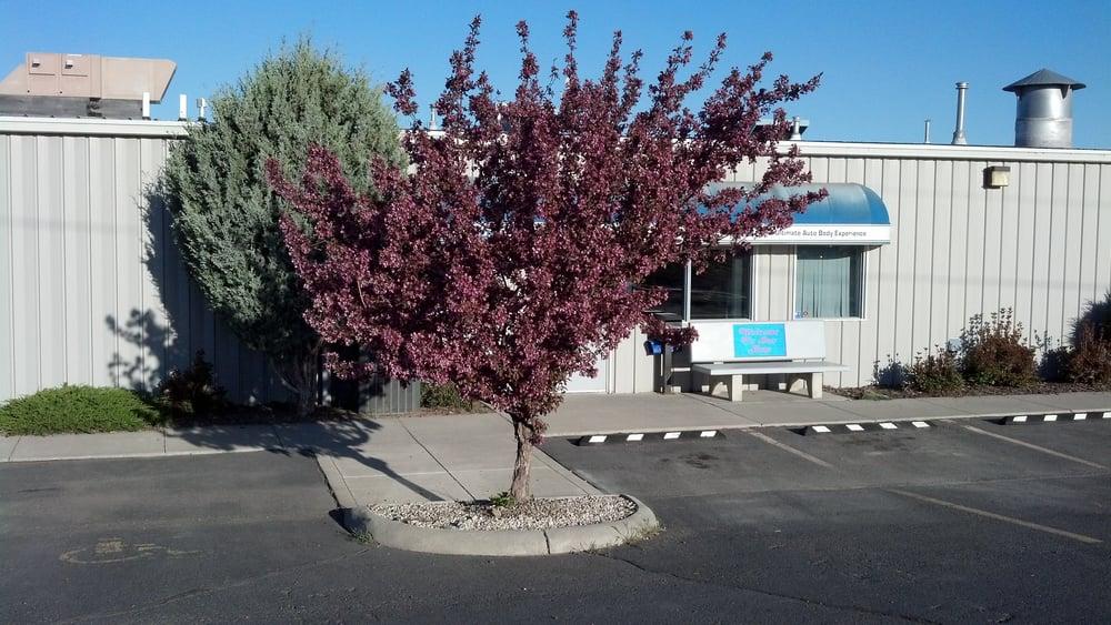 Collision Pro: 420 Dorothy St, Helena, MT