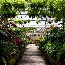 Photo Of Plant Depot San Juan Capistrano Ca United States