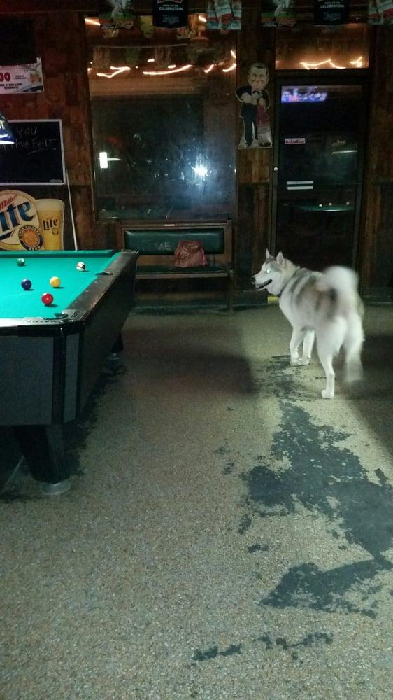 Dog Bar St Pete Beach