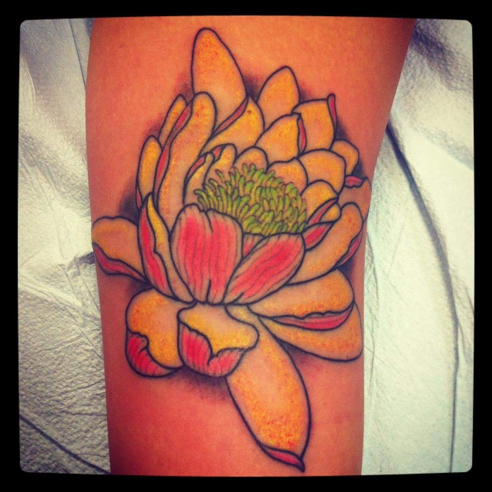 A Lotus Flower By Dru 5 Years Ago Yelp