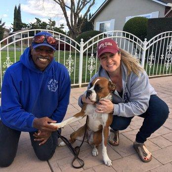 One Day Dog Training Palo Alto