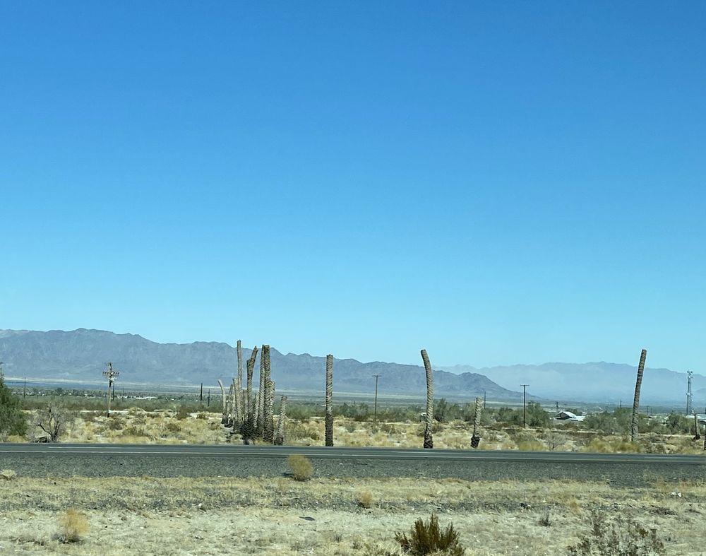 Desert Center Grape Farm: Desert Center, CA
