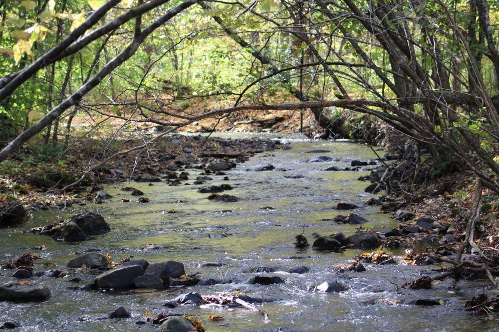 Hand Hollow Conservation Area: 4079 Rt 9, New Lebanon, NY