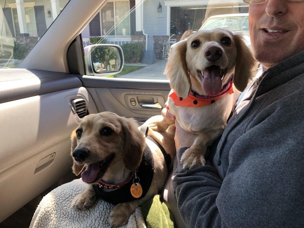Bark'n Beauties Pet Grooming: 3020 Floyd Ave, Modesto, CA