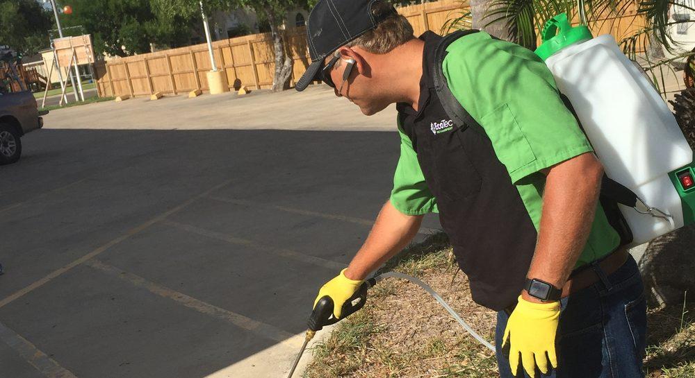 EcoTec Pest Management: 2216 Padre Blvd, South Padre Island, TX