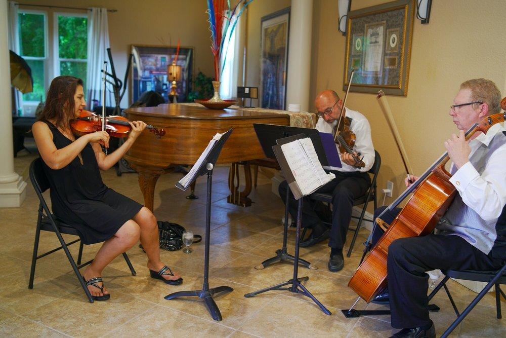 Bravo String Quartet - 12 Photos & 15 Reviews - Musicians