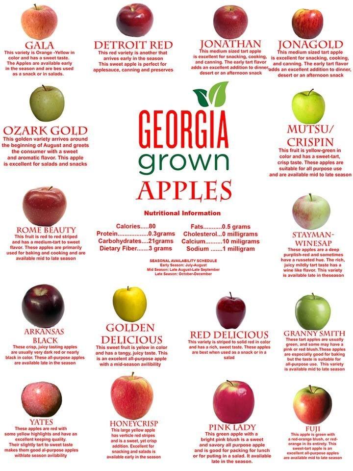 Aaron Family Orchards: 8350 Hwy 52 E, Ellijay, GA