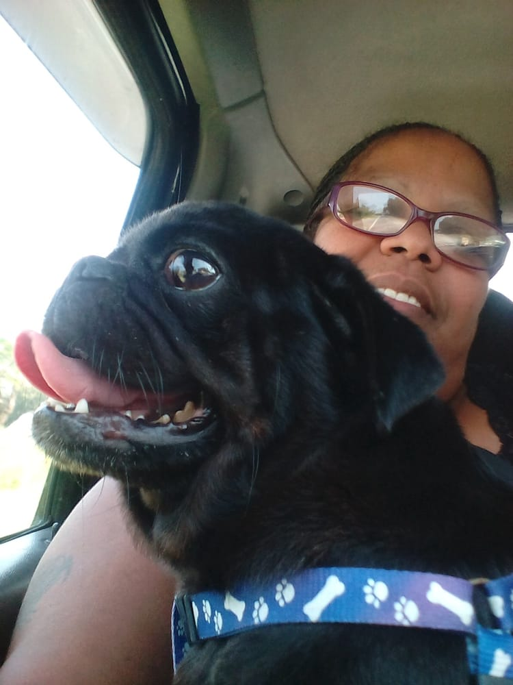 Suwannee Oaks Animal Clinic: Highway 247, Branford, FL