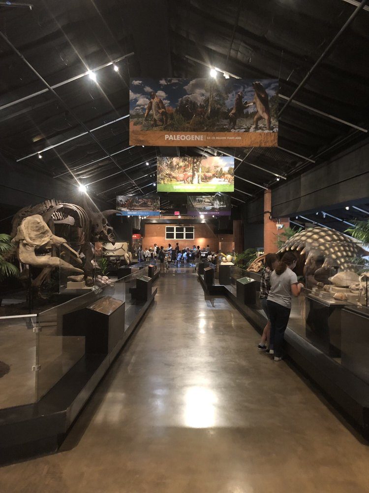Museum Of Natural Sciences Th