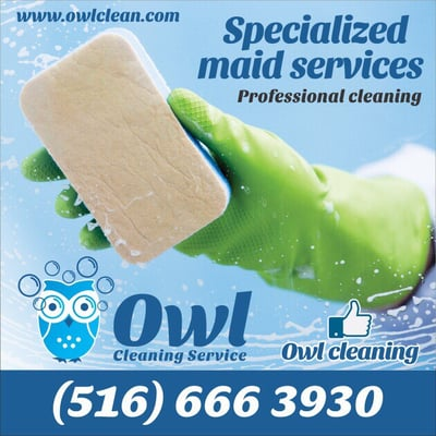 Owl Cleaning Services Home Cleaning 545 Westbury Ave