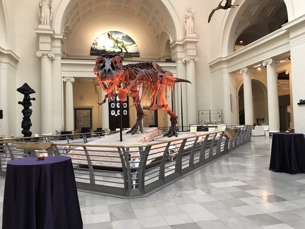 The Field Museum: 1400 S Lake Shore Dr, Chicago, IL