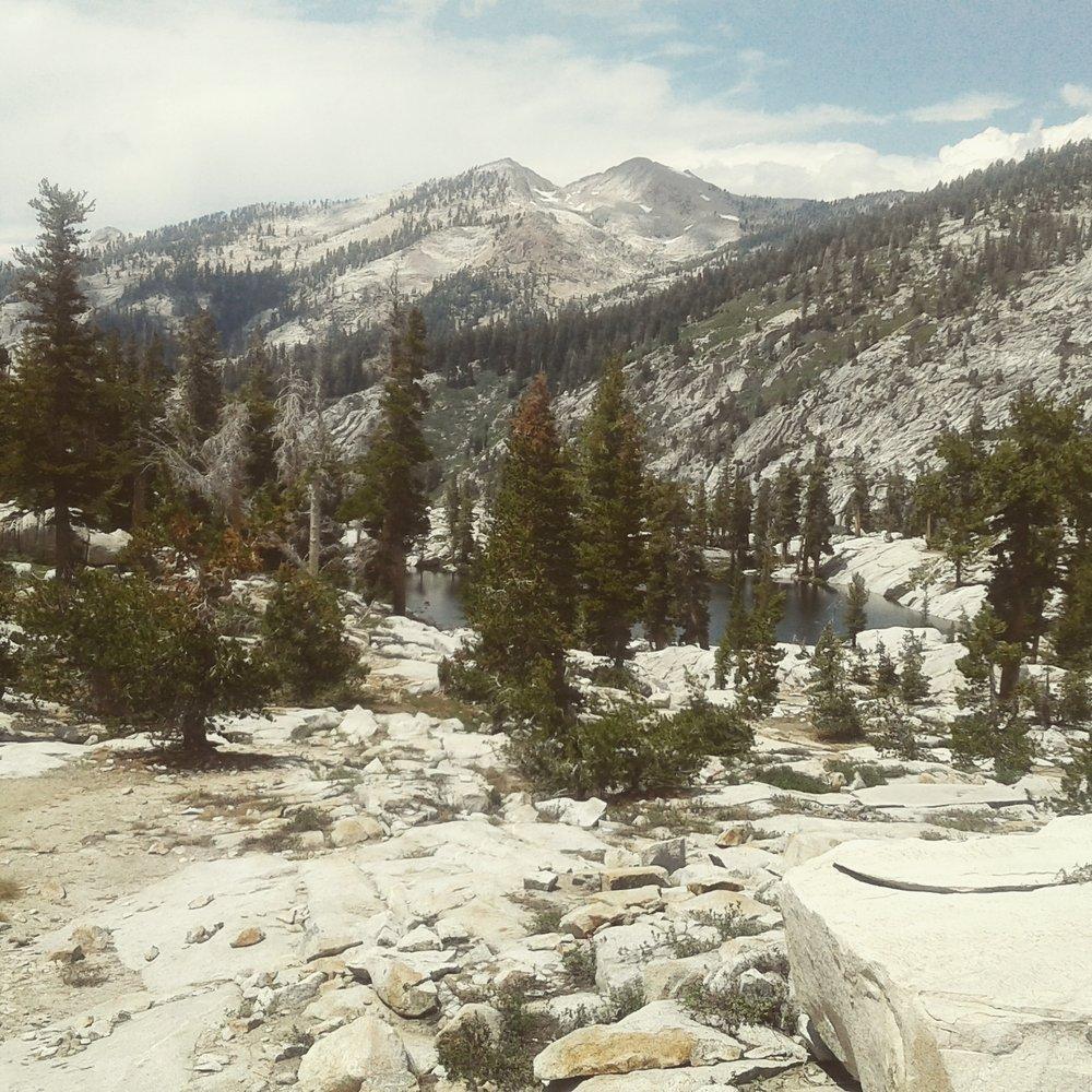 Sequoia Guides: Three Rivers, CA