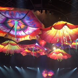 Feb 17, · Answer 1 of I would love to see Le Reve in May. The best discount I could find was $ each plus taxes plus fees. Is there anything out there better than that?