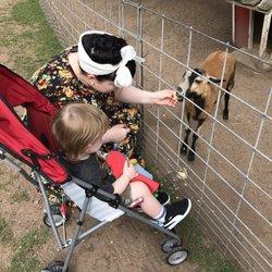 Hayward wi zoo
