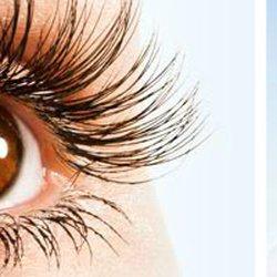 c5803e5f5c Daynes Eye & Lasik - Laser Eye Surgery/Lasik - 520 Medical Dr ...
