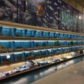 Petsmart pet stores 3698 e franklin blvd gastonia nc for Fish store reno
