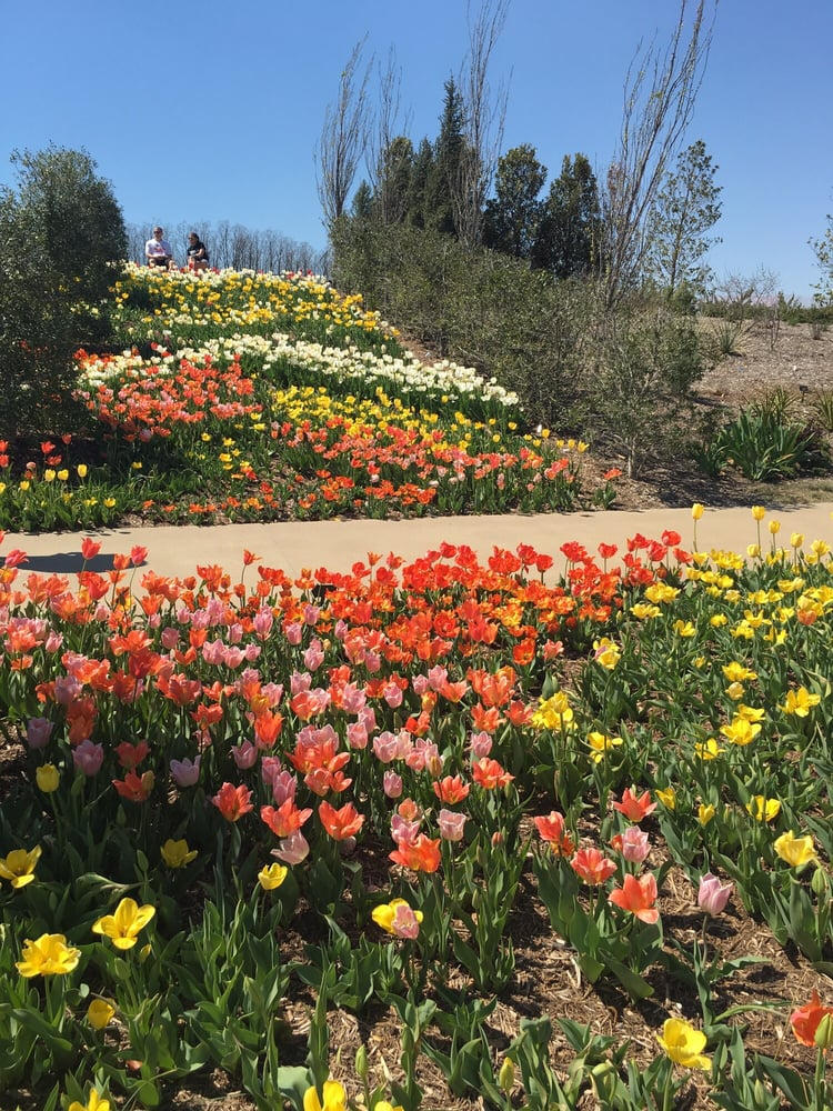 Photos For Tulsa Botanic Garden Yelp