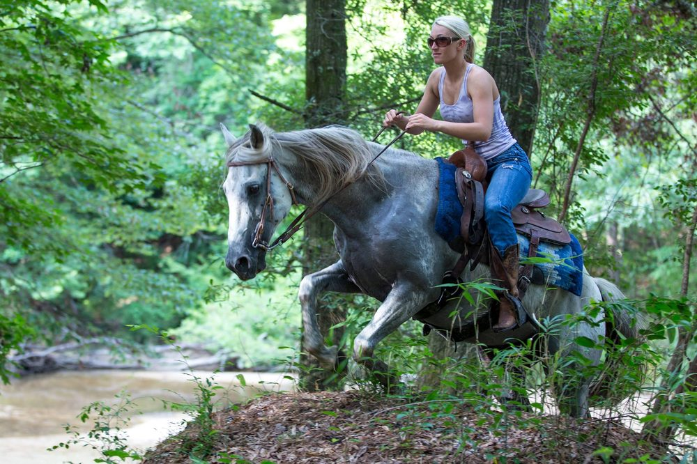 Brushy Creek Ranch: 5939 E Homochitto Rd, Gloster, MS