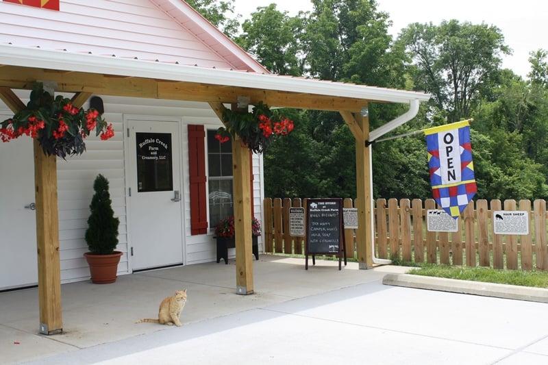 Buffalo Creek Farm and Creamery, LLC: 3255 Buffalo Creek Farm Rd, Germanton, NC