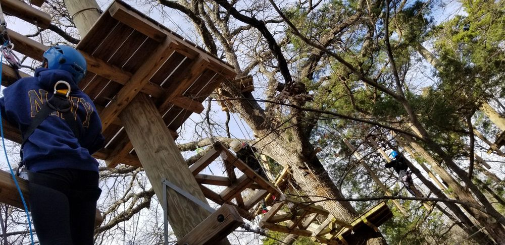 Trinity Forest Adventure Park