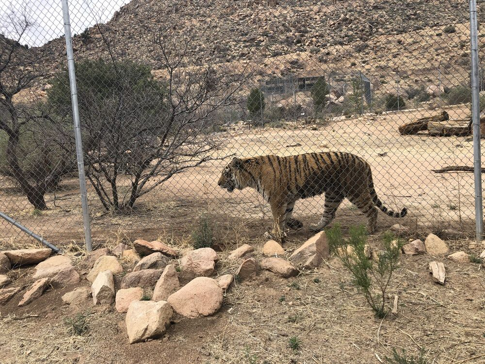 Keepers of the Wild Nature Park: 13441 E Hwy 66, Valentine, AZ