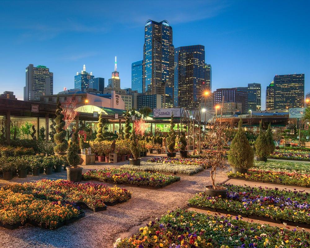 Ruibal\'s Plants of Texas - 12 Photos & 14 Reviews - Nurseries ...